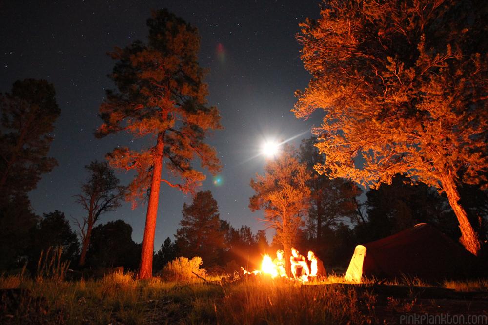 camping under the stars in Utah