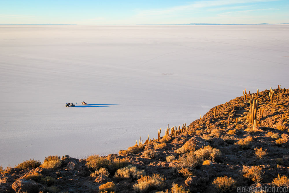 view of Salar de Uyuni from Isla Incahuasi