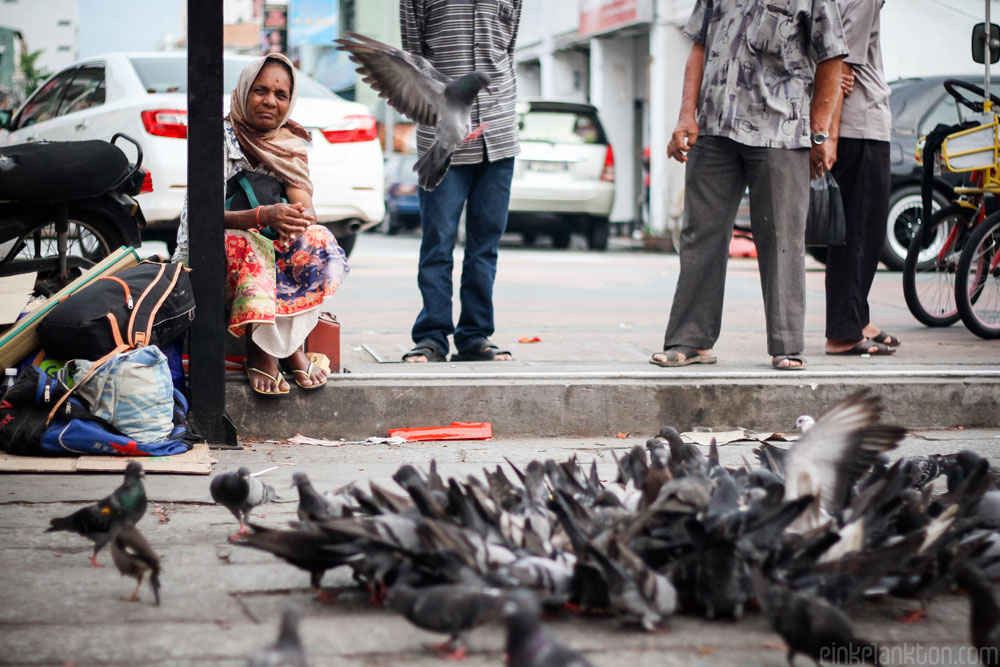 pigeons and lady sitting in Malaysia