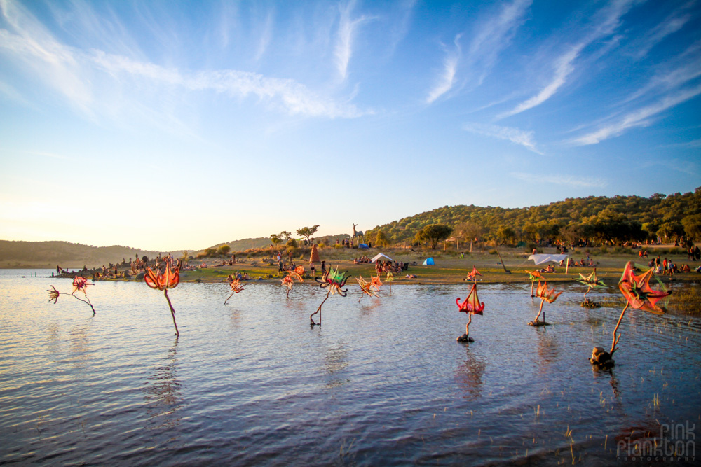 lake at Boom Festival