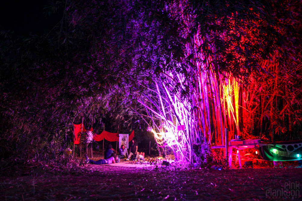people sitting in bamboo forest at night at Festival Ometeotl