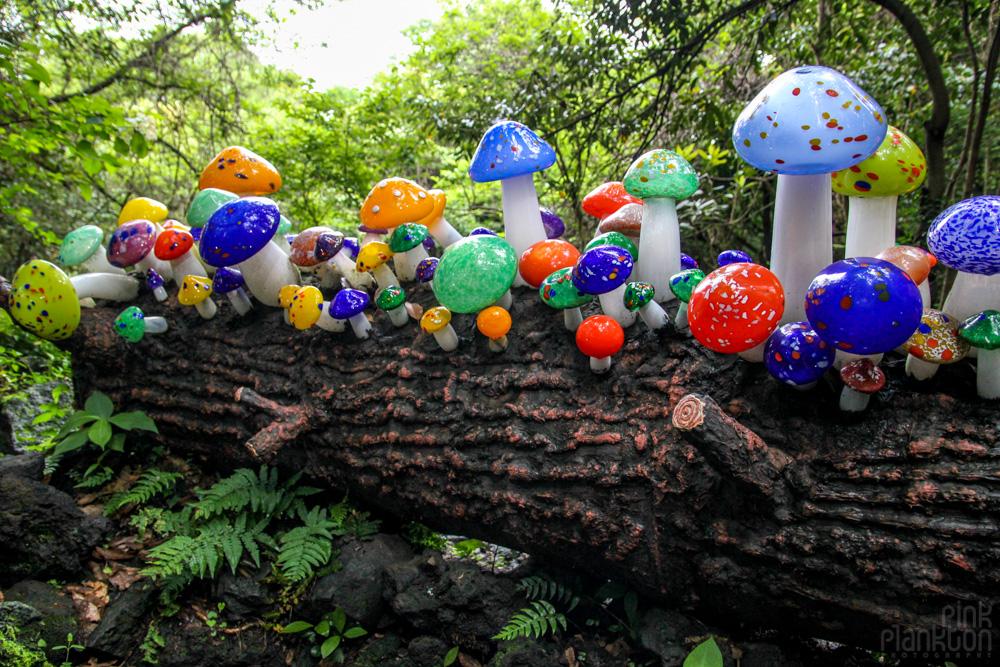 glass mushrooms in South Korea's glass museum