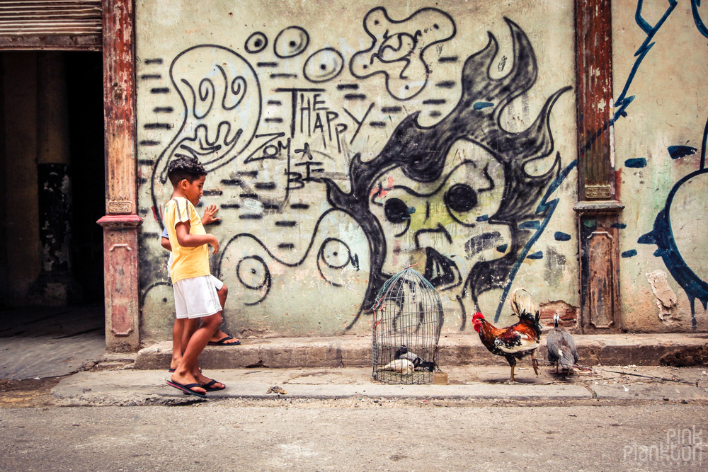 kids with rooster and bird in cage in Havan Cuba with graffiti
