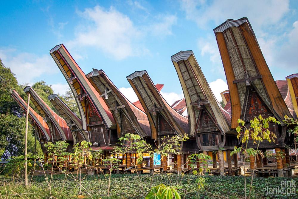 Tongkonan boat houses in Toraja village, Sulawesi
