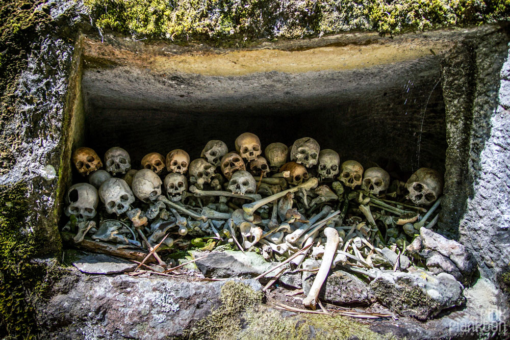 skulls in Toraja village, Sulawesi