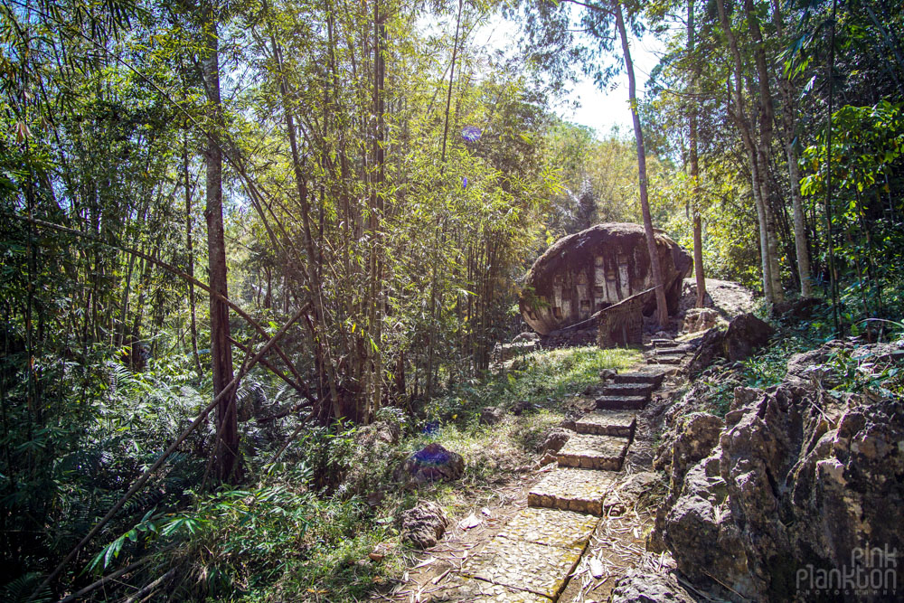 stone grave in forest in Toraja, Sulawesi