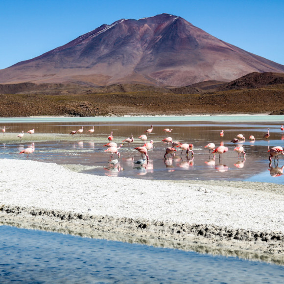 36 Photos That Show the Beauty of Bolivia's Deserts