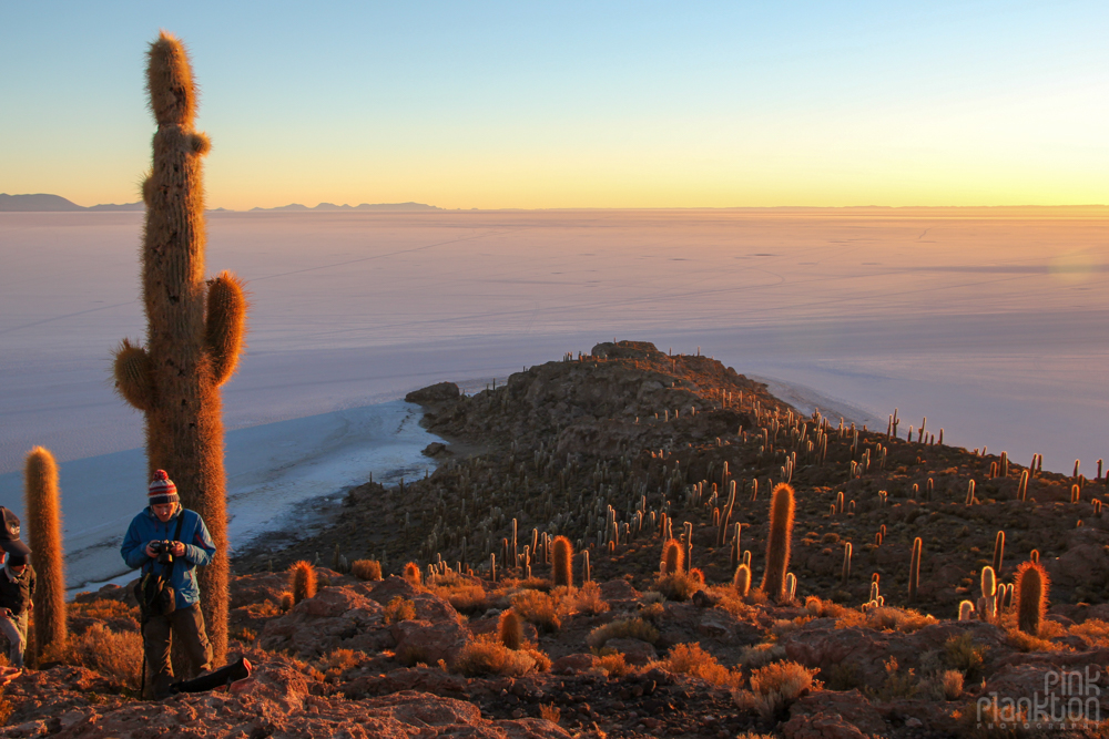 sunrise and cacti on Isla Incahuasi in Bolivia's Salar de Uyuni