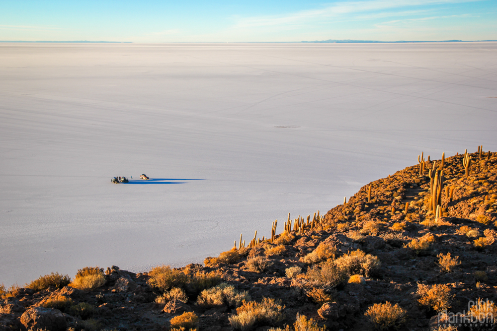 view of cars and Bolivia's Salar de Uyuni from Isla Incahuasi