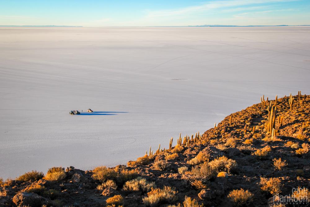 view of cars and Bolivia's Salar de Uyuni from Isla Incahuasi