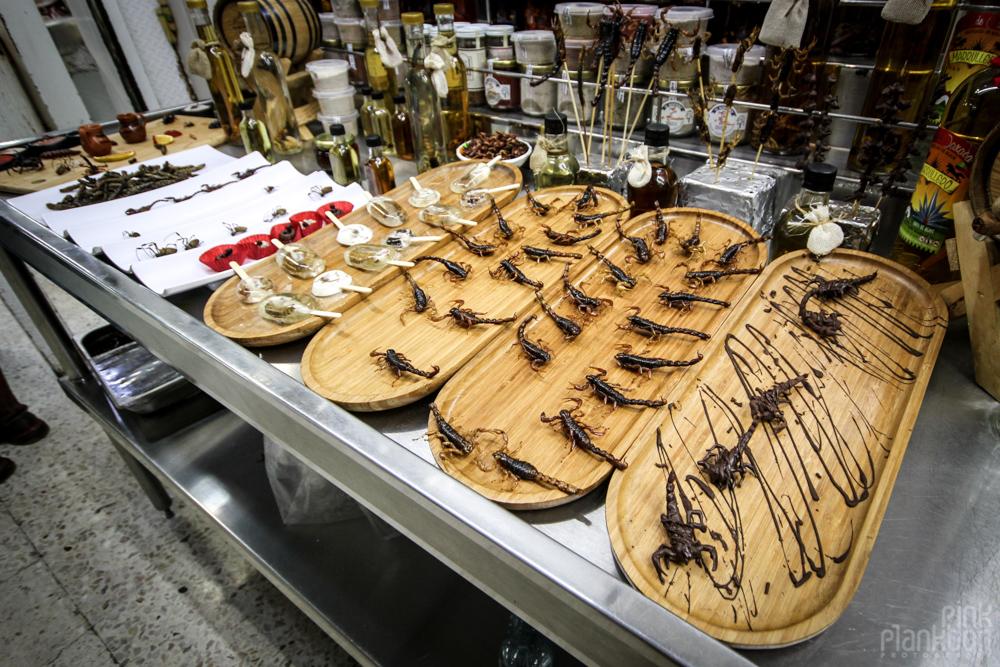 chocolate scorpion deserts at Mercado San Juan Gourmet Market in Mexico City
