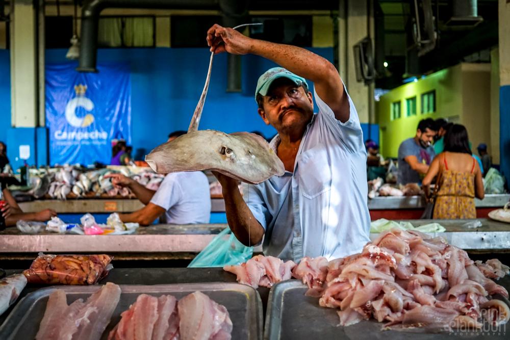 Campeche local market, man holding stingray